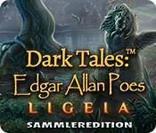 Feature screenshot Spiel Dark Tales: Edgar Allan Poes Ligeia Sammleredition