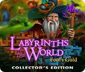 Har screenshot spil Labyrinths of the World: Fool's Gold Collector's Edition