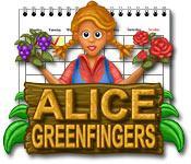 Функция скриншота игры Алиса Зеленые Пальцы
