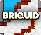 Функция скриншота игры Briquid
