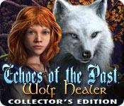 Feature screenshot game Echoes of the Past: Wolf Healer Collector's Edition