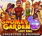 Feature screenshot game Gnomes Garden: Lost King Collector's Edition