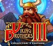 Feature screenshot game Viking Brothers 3 Collector's Edition