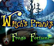 Feature screenshot game Witch's Pranks: Frog's Fortune
