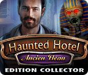 La fonctionnalité de capture d'écran de jeu Haunted Hotel: Ancien Fléau Edition Collector