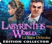 La fonctionnalité de capture d'écran de jeu Labyrinths of the World: La Muse Défendue Edition Collector