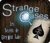 La fonctionnalité de capture d'écran de jeu Strange Cases: Les Secrets de Grey Mist Lake