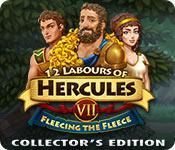 Funzione di screenshot del gioco 12 Labours of Hercules VII: Fleecing the Fleece Collector's Edition