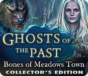 Funzione di screenshot del gioco Ghosts of the Past: Bones of Meadows Town Collector's Edition
