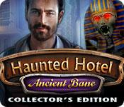 Funzione di screenshot del gioco Haunted Hotel: Ancient Bane Collector's Edition