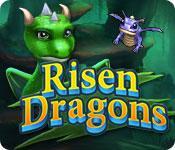 機能スクリーンショットゲーム ライズン ドラゴン