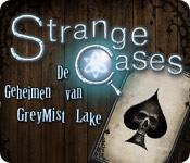 Functie screenshot spel Strange Cases: De Geheimen van Grey Mist Lake